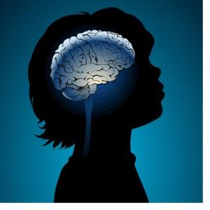 34984_brain