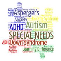 4-color-puzzle-piece-special-needs